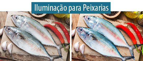 Lumicenter - Artigo - Iluminação para Destacar Produtos no Supermercado - Qual é a iluminação ideal para peixarias